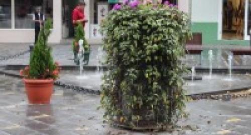 Obilazak starog gradskog jezgra Zrenjanina – Galerija